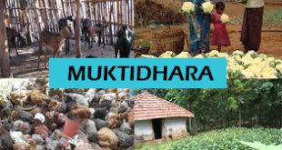 Muktidhara scheme in West Bengal